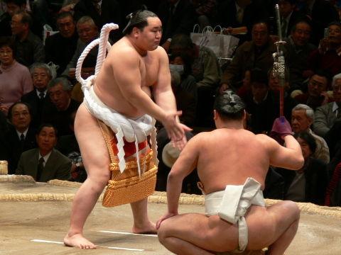 sumo07_01_17