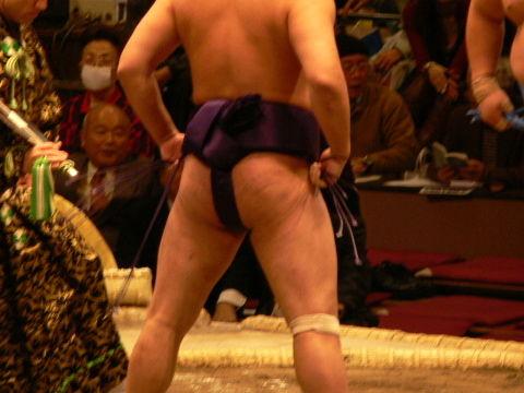 sumo07_01_08